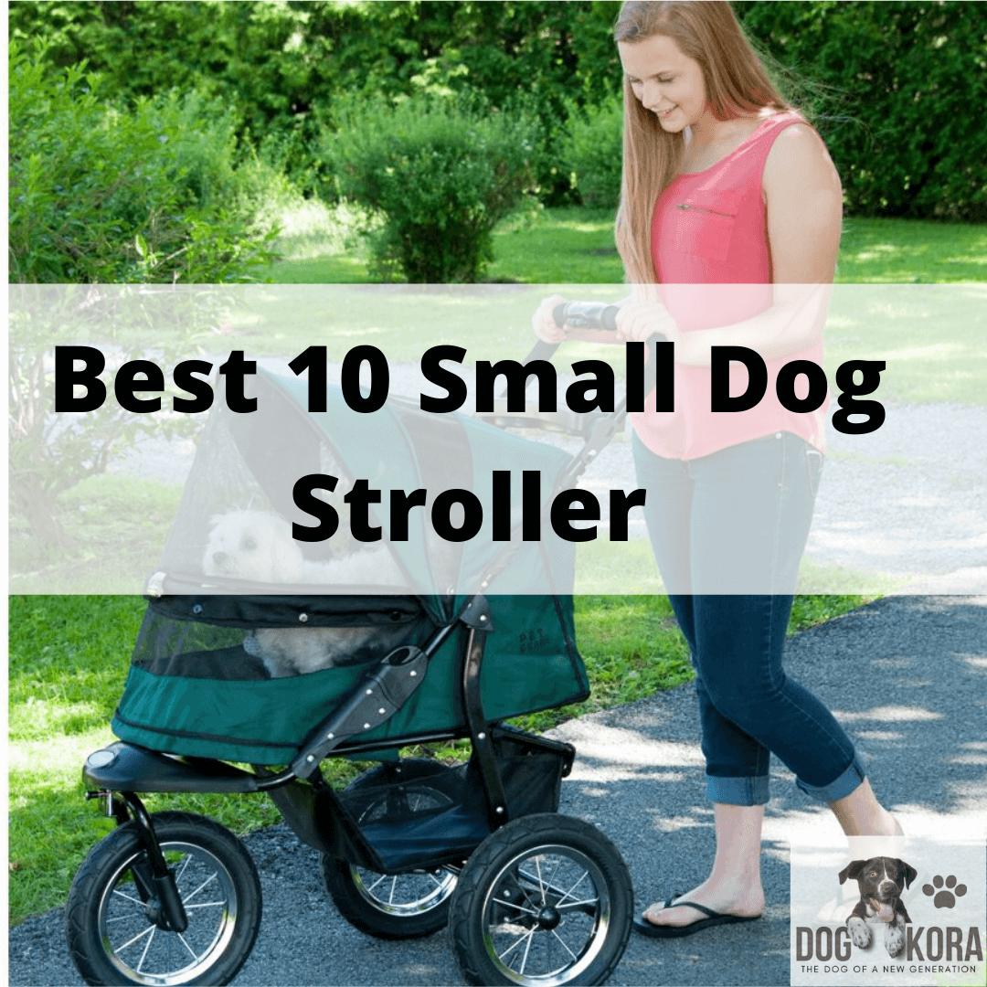 Best 10 Small Dog Stroller