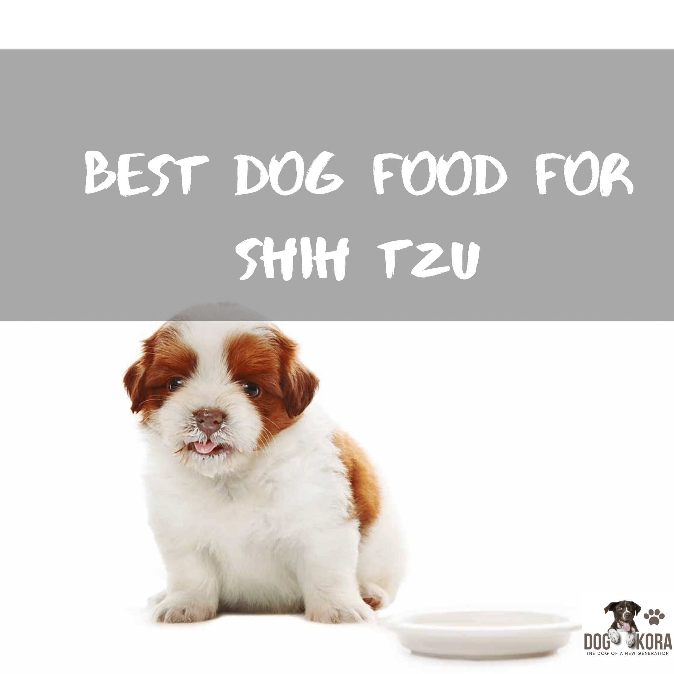 Best Dog Food For Shih tzu