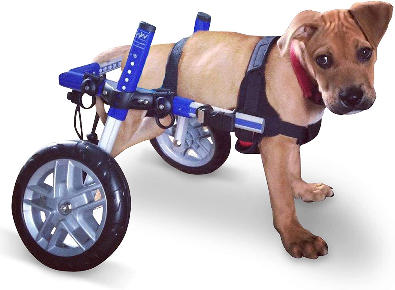 Walkin' Wheels Dog Wheelchair for Small Dogs