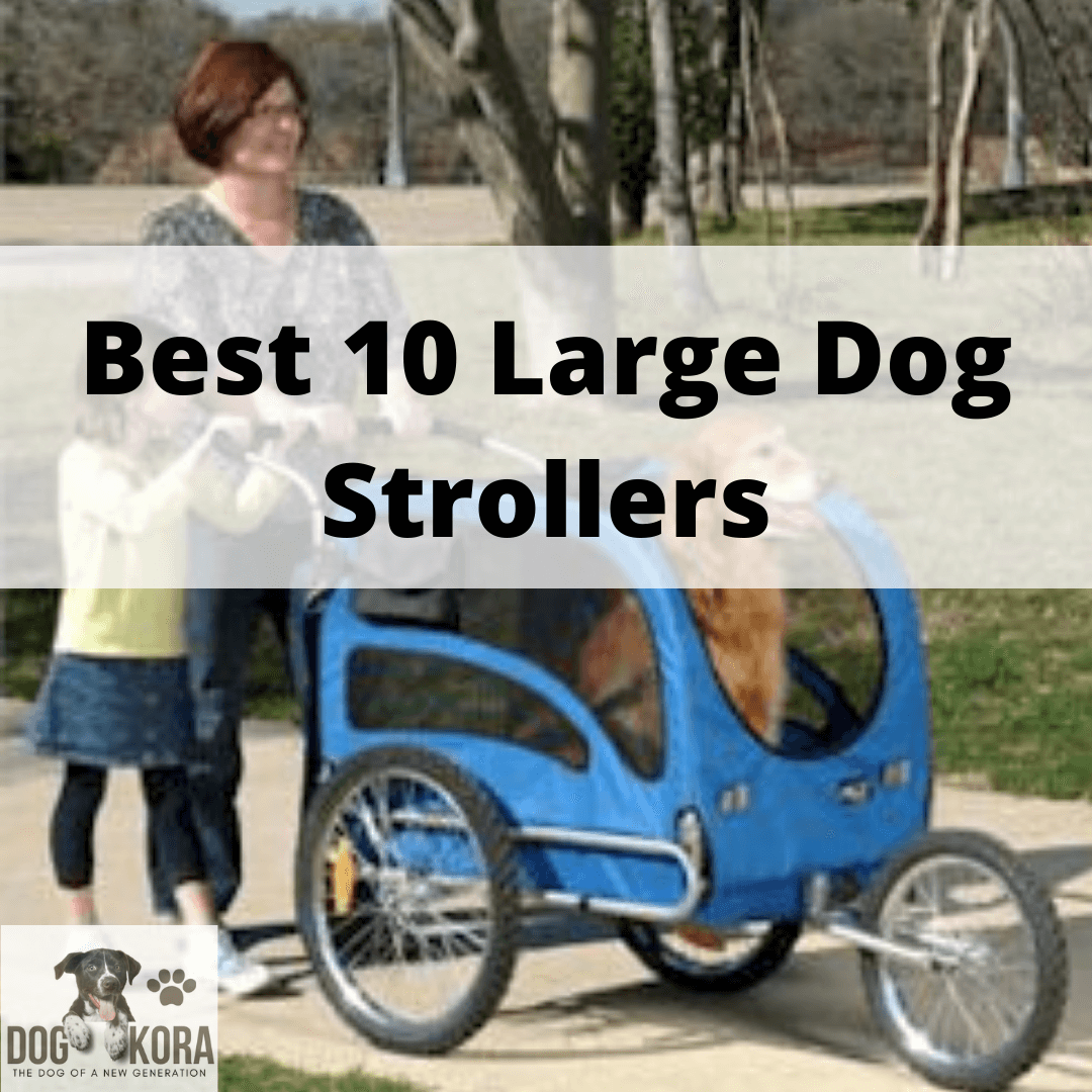 Best Large Dog Stroller
