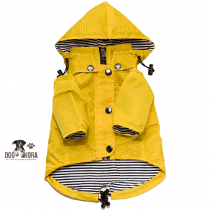 best small dog raincoat