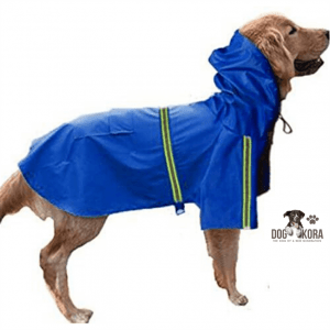 best raincoat for large dog
