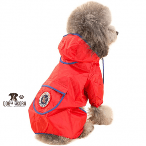 best lined dog raincoat