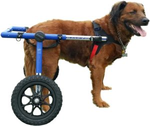 Walkin' Wheels Dog Wheelchair for Large Dogs 70-180 lbs